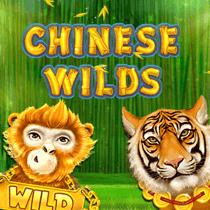 Chinese Wild Slot