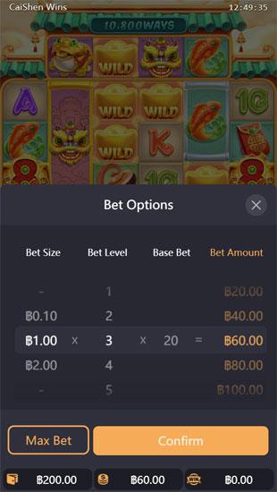 เลือกจำนวนเงินที่ต้องการเล่นสล็อตพีจี