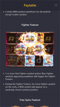 Fighter Feature